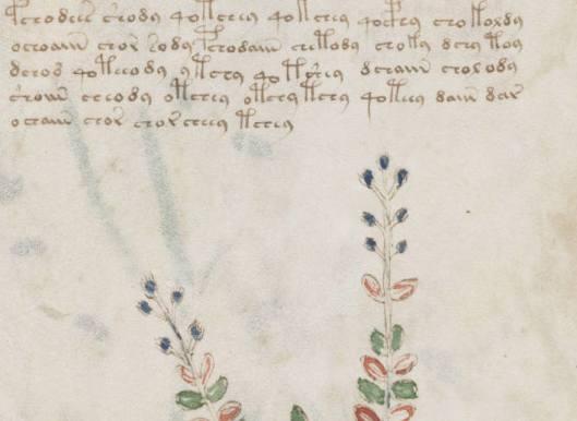 manuscrito039