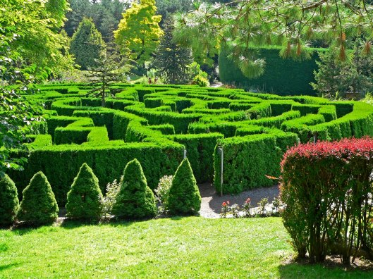 The labyrinth in Van Dusen Botanical garden, Vancouver BC.