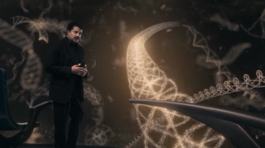 Cosmos2.1Ancscriptofourgeneticcode