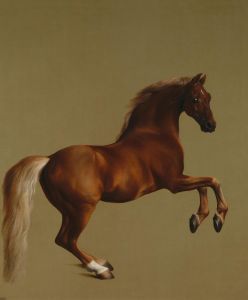 800px-Whistlejacket_by_George_Stubbs_edit