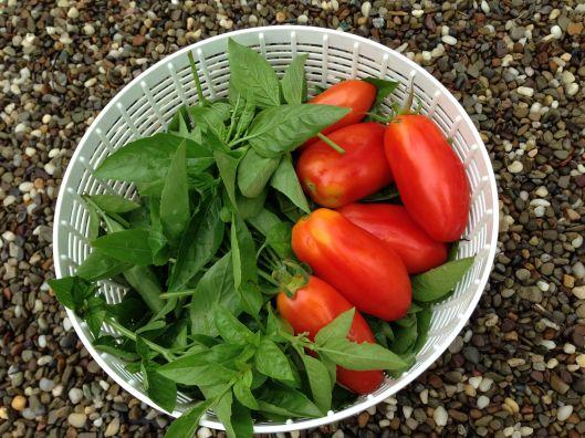 tomato-and-basil