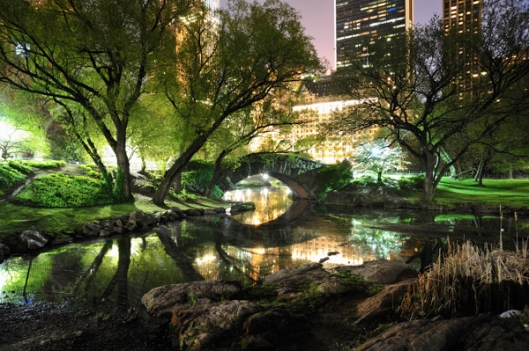 central-park-at-night